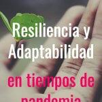 resiliencia y adaptabilidad